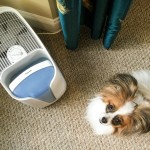 Why I Prefer Honeywell Cool Moisture Humidifiers For My Home + A Giveaway